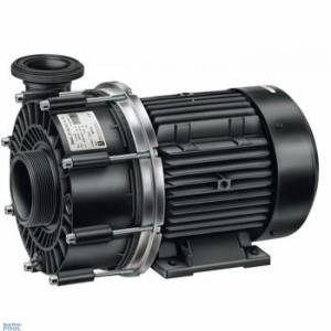 Pump Badu 21-60/44G
