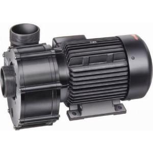 Pump Badu 21-80/31RG