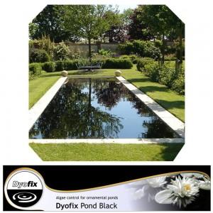 Dyofix Pond Black tvenkiniams nuo dumblių