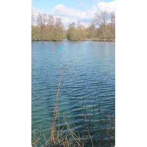 Dyofix Pond blue ežerams nuo dumblių